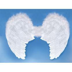 Skrzydła anioła, biały 80x 60 cm